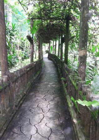 canopy: Canopy Park at Kuala Lumpur Butterfly Park