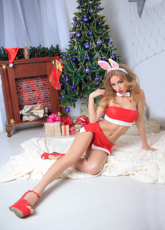 brunette wearing sexy christmas lingerie . bunny photo