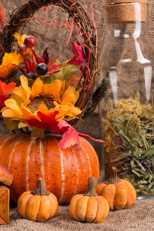 still life autumn harvest, pumpkins and mushrooms on a burlap background