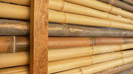natural texture background. bamboo fence. Stockfoto - 128603643