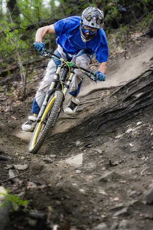 Mountainbiker rides on path in forest photo