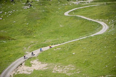 freeride: Mountainbikers riding on a path