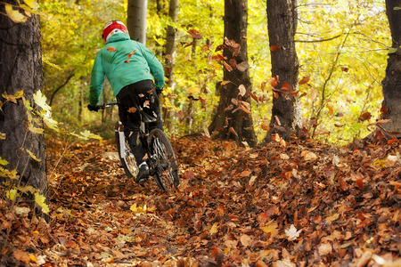 Mountainbiker rides in autumn forest photo