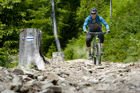 Man on mountain bike rides on stony trail in the forest. Stock Photo