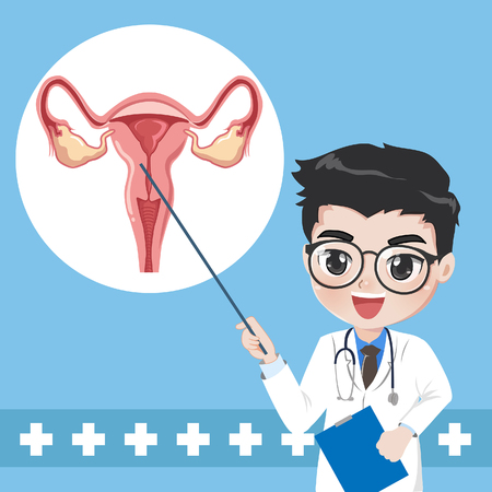 Doctor teaches and elements of the system human uterus and give knowledge.