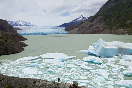 pain�: Glacier in Torres del Paine national park in Chile