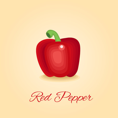red pepper: Delicious red pepper, hungarian pepper, paprika vegetable vector illustration in original style