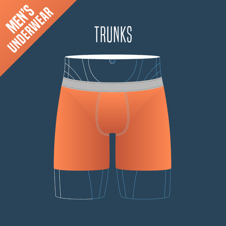 display size: Mens underwear vector illustration. Design element for trunks, boxers male underwear model for poster, flyer, display in retail, store