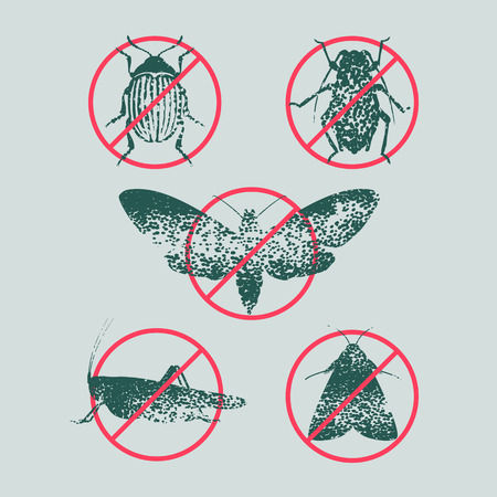 Set of pest insects in prohibition sign vector illustration. Icons, symbols with agriculture, farming, gardening flies, bugs, beetles. Design element for pest insects control
