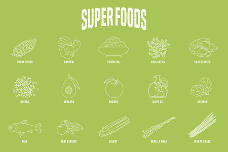 Selection of superfoods products, berries, green in vector. Thin line icons, design elements of cocoa beans, wheatgrass, acai seeds, spirulina, quinoa for super food alternative medicine concept Illustration