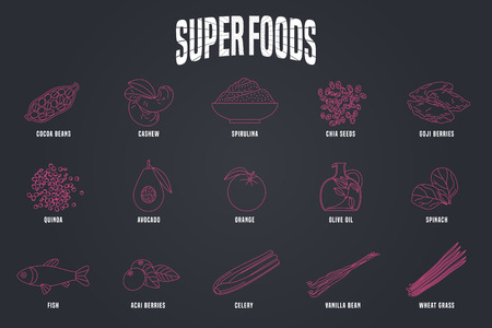 Set of superfoods products, berries, roots in vector. Icons, design elements, illustrations of cacao beans, goji berry, spirulina, wheatgrass, spinach for super food vegetarian eating concept