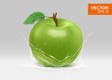 Whole green apple with water splash realistic 3D design element. Vitamin and fruits concept illustration Vetores