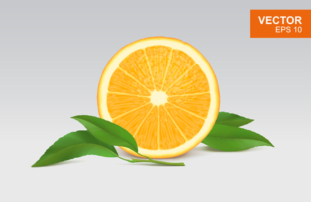 Slice of orange realistic 3D illustration, design element. Half of orange with leaves