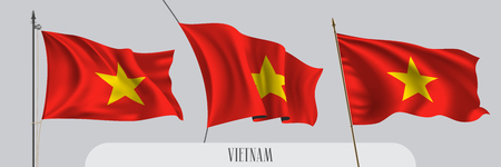 Set of Vietnam waving flag on isolated background vector illustration