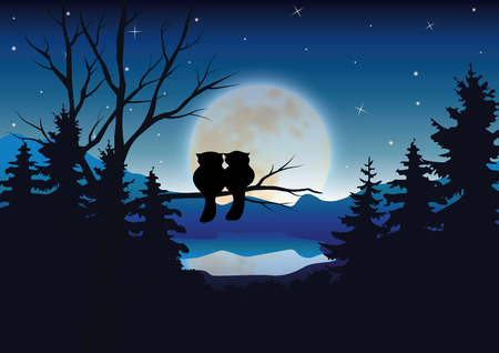 romantic: Vector illustrations ,owl romantic couples