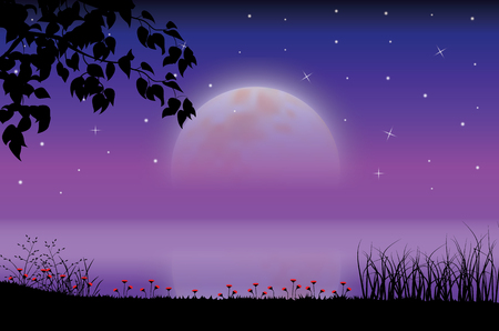 The Beauty of the Moon in Nature , Vector illustrations landscape Çizim