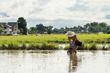 farm duties: Young agriculturist fishing in swamp by coop Stock Photo