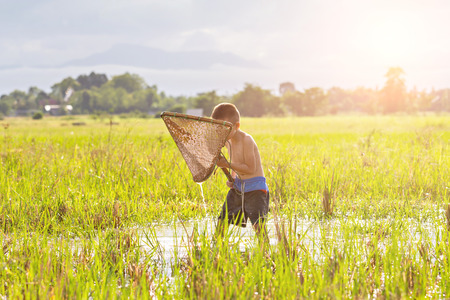 agriculturist: Young agriculturist fishing in swamp by coop Stock Photo