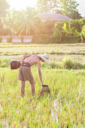 agriculturalist: Young agriculturist fishing in swamp by coop Stock Photo