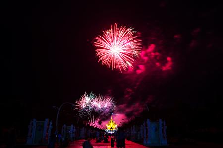 the royal park: Fireworks at Royal Park Rajapruek, Chiang mai Thailand