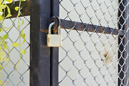 puertas de hierro: Hierro puerta de malla cerrada por un candado