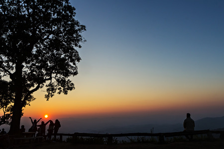 silhouetted: Peoples and trees silhouetted with stunning sunset