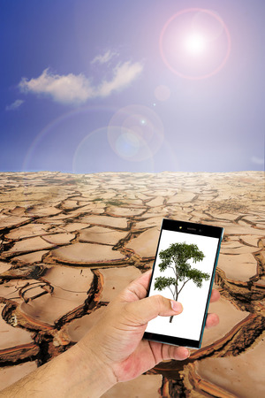 fissure: Hand carrying mobile phone with tree on cracked ground in sunny day