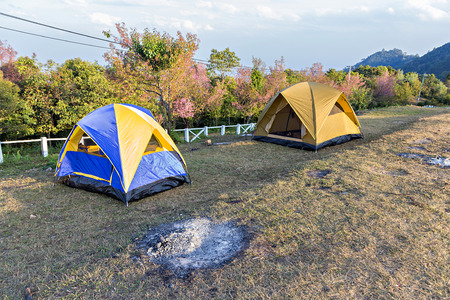 campground: Camping Tents at Campground during Daytime in Woods