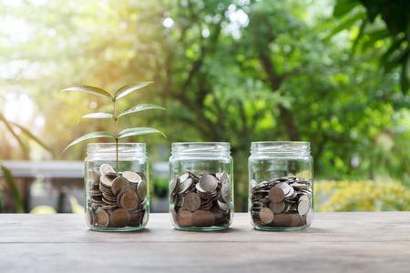 Mischen Sie Münzen und Samen in der klaren Flasche, Geschäftsinvestitions-Wachstumskonzept Standard-Bild - 78811637
