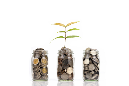 Seedling Plant are Growing on Money Coin Bottle isolated on white background