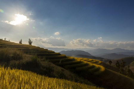 Beautiful landscape view of rice terraces in chiang mai , Thailand. Standard-Bild - 112676788