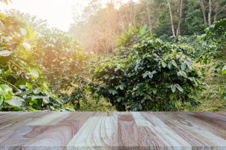 Wooden tabletop on blurred coffee plantations background, can be used for display or montage your products. Standard-Bild - 112676937