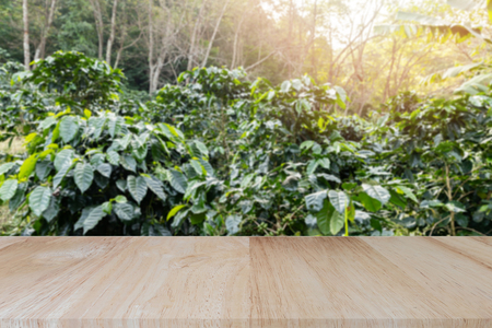 Wooden tabletop on blurred coffee plantations background, can be used for display or montage your products.. Standard-Bild - 116524698
