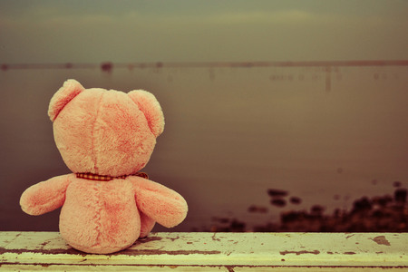 someone: Bear doll feel lonely, It needs someone from somewhere