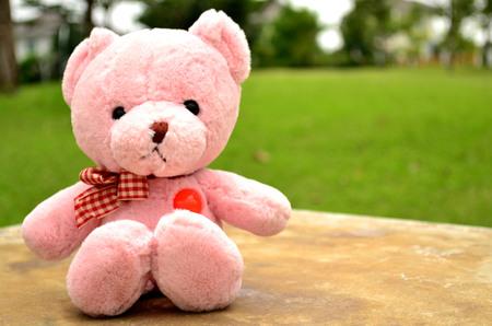 soul mate: Bear doll sit in garden