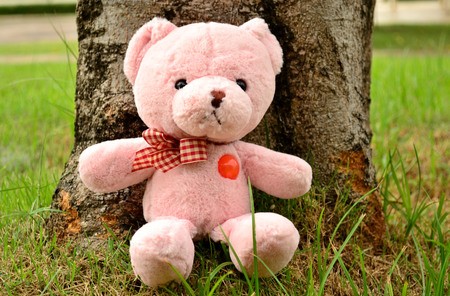 soul mate: Bear doll sit under the tree