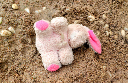 with no one: Rabbit doll was left on the ground , no one cares