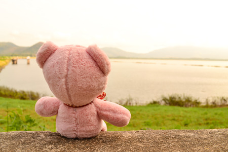 bear lake: Teddy bear doll sitting on ground and looking mountain view