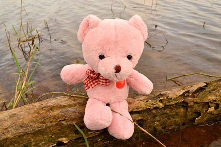 river trunk: Teddy bear doll sitting on old trunk in the river Stock Photo