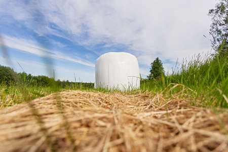 Close up packed in white plastic polyethylene haystacks. Haystacks in PVC film packaging with modern technology on the green summer field for livestock feeding. Modern agricultural technologies.