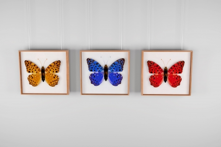 triptych: Collection of insects