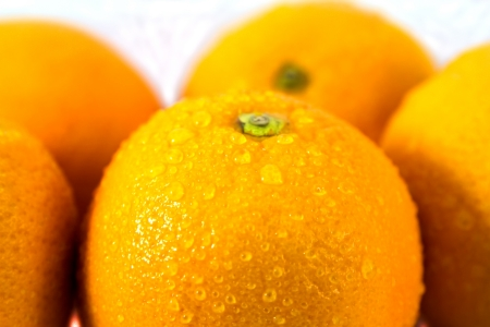Fresh juicy orange photo