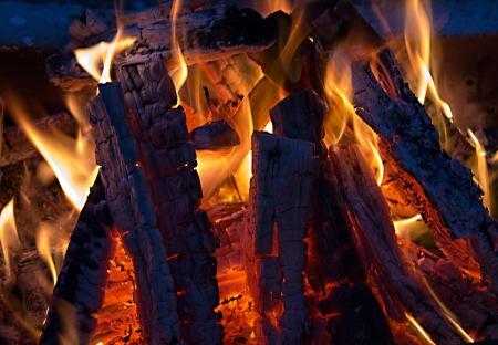 Burning tree Stock Photo