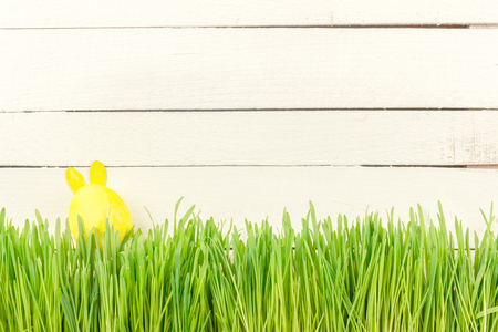 Cute Easter Bunny in the green fresh country. Yellow Easter egg.  Stock Photo