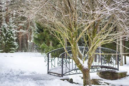 Winter landscape, decorative bridge over a frozen stream. Forest panorama. Snow park. Stok Fotoğraf