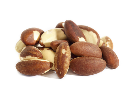 Brazil nut. Bertholletia, of the family Lecythidaceae. High-calorie nut. Isolated on white background.