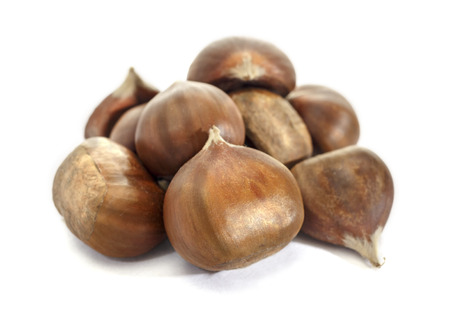 Chestnut nut. raw nut in the shell. Isolated on white background. Raw chestnut. 写真素材