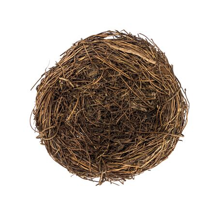 Bird's nest, Easter mood. Easter symbol, a natural nest of branches.