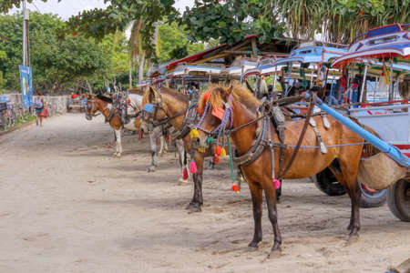 Gili Air Island in the Indian Ocean. 01/03/2017 Pony taxi on the island. Private transport. On the island there is no equipment for fuel and lubricants. Editorial