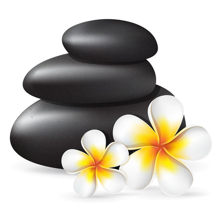 Spa relaxation vector illustration with black stones and frangipani tropical flowers, white tropical plumeria
